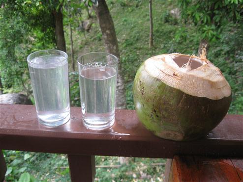 kokosovaya-voda