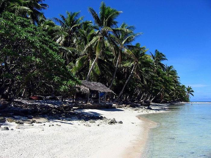 na-tropicheskom-ostrove