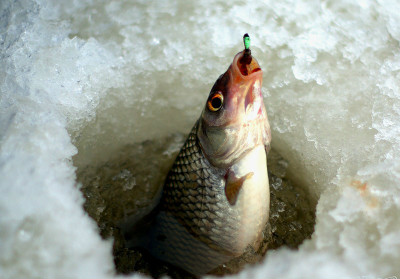 б у буры для зимней рыбалки купить