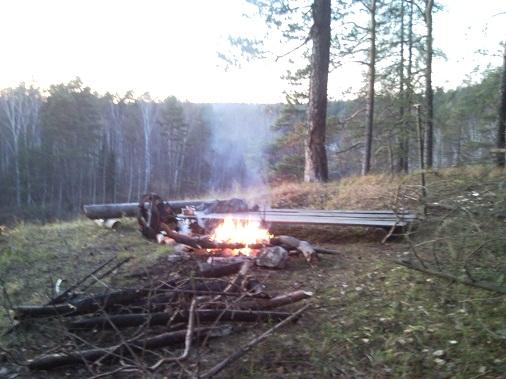 в осеннем лесу темнеет